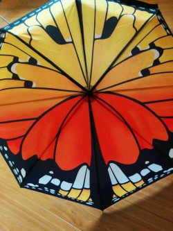 butterfly umbrella suck uk